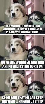 Law Dog Meme - bad pun dogs imgflip