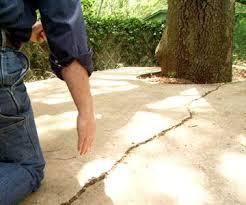 Repair Concrete Patio Cracks Best 25 Driveway Repair Ideas On Pinterest Diy Concrete