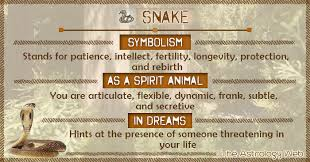 infected tattoo dream meaning snake meaning and symbolism the astrology web