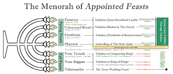 seven feasts of the messiah the seven years 2014 to 2021 explained antichrist revealed
