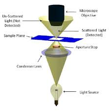 dark field microscopy main page bphs 4090 microscopy i physics wiki