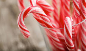 where to buy candy canes the origin of the candy