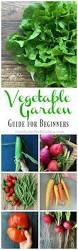 Kitchen Gardening Ideas 349 Best Growing Vegetables Images On Pinterest Veggie Gardens