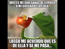 Memes Rana Rene - el origen de los memes de la rana ren礬 diario el heraldo