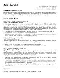Sample Management Resume by Free Cash Management Analyst Resume Example