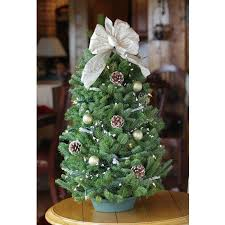 110 best tabletop trees images on