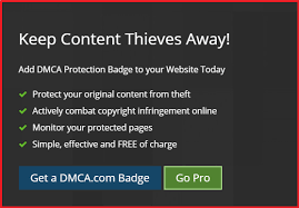 how to add dmca protection badge on your wordpress blog guide