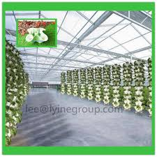 strawberry planter strawberry planter suppliers and manufacturers