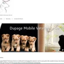Creature Comforts Mobile Vet Dupage Mobile Veterinary Services Veterinarians Glen Ellyn Il
