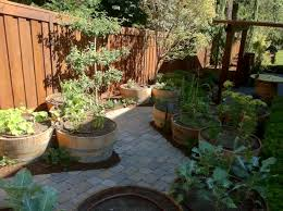 the easiest family vegetable garden yes spaces