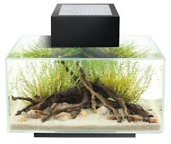 fluval edge black gloss 23l led co uk pet supplies