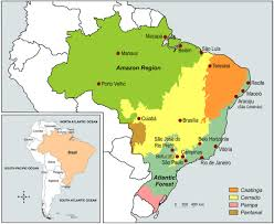 South America Physical Map Flashcards Table On Latin America Physical Features The Brazilian