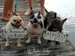 Save The Date Signs Save The Date Sign Set For The Dogs So Cute Would Be Great To