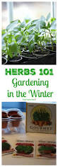 gardening in the winter herbs 101 healthy ideas for kids