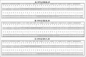 Define Binding Price Floor by Distinct Mechanisms Define Murine B Cell Lineage Immunoglobulin
