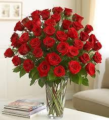 dozen roses three dozen roses 225 95 255 95 in universal city tx