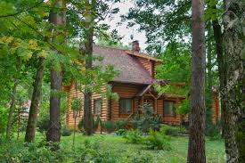 cabin houses country wooden house in the forest stock photo picture and
