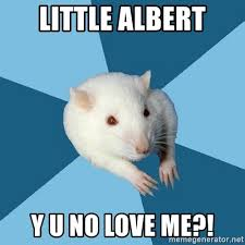 Why You No Love Me Meme - y u no love me meme