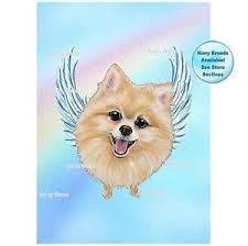loss of dog pomeranian angel picture dog memorial pet loss gift rainbow