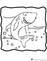 shark coloring woo jr kids activities