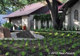 alternatives to grass in backyard drive by gardens rockin alternative lawns in north austin digging