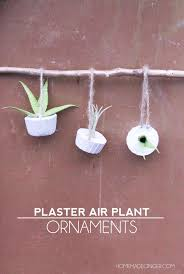 plaster air plant ornaments diycandy