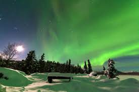 Northern Lights Tours In Alaska Recommendations For Tours Trips