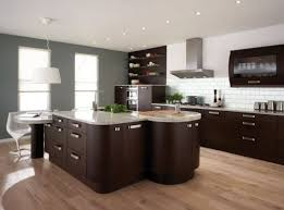 what wall color goes with dark kitchen cabinets nrtradiant com