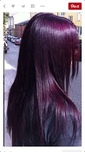 eggplant purple so almost black hair colorz pinterest