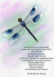 image result for dragonfly meaning quotes dragonfly