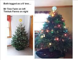 mr tree farm blacklick oh 43004 yp com