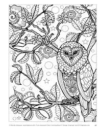 awesome owls coloring book by fox chapel publishing issuu see
