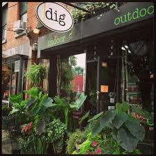 dig closed 36 photos u0026 77 reviews nurseries u0026 gardening