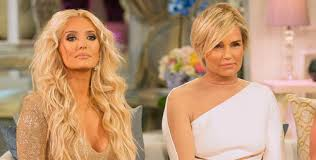 jolanda foster hair color yolanda foster and erika girardi we want our own spin off show