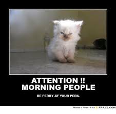 Morning People Meme - attention morning people be perky at your peril memes funny pics