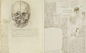 leonardo da vinci anatomist the queen u0027s gallery review telegraph