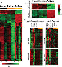 the genomic analysis of lactic acidosis and acidosis response in