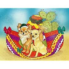 chihuahua cards 10 cards with