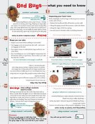 How To Avoid Bed Bugs Bed Bugs Infographic Reviews Signs And Common Locations Of Bed Bug