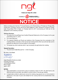 ttngl notice 2nd annual meeting of shareholders ngc