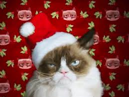 Merry Christmas Cat Meme - grumpy cat s worst christmas ever twitter reactions people com