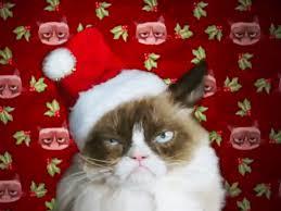 Grumpy Cat Christmas Memes - grumpy cat s worst christmas ever twitter reactions people com