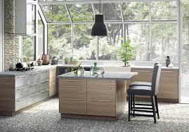 10 Inch Wide Kitchen Cabinet Ikea U0027s New Sektion Cabinets Sizes Prices U0026 Photos Kitchn