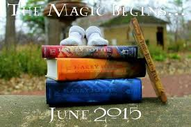 the burgess family announcement a harry potter themed pregnancy