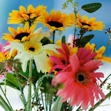 fresh cut flowers fresh cut flowers in bangalore fresh cut flowers distributor