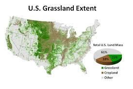 Prairies In World Map by Tyler Lark Gibbs Land Use And Environment Lab