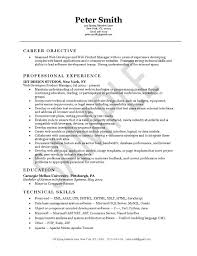 Job Objective Examples For Resume by Developer Resume Example