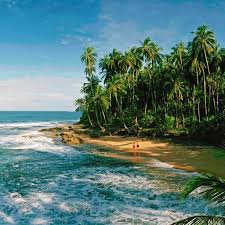 5 reasons to visit costa rica u0027s caribbean side travel leisure