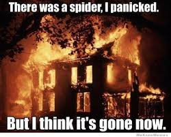 I Saw A Spider Meme - there was a spider i panicked weknowmemes