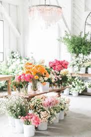 98 best flowers u0026 more flowers images on pinterest flowers